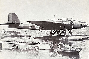 Warbird Picture - A Finnish-operated He 115.