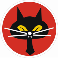 Airplane Picture - Black Cat Squadron official emblem