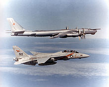 Airplane Picture - An F-14A Tomcat from VF-114 intercepting a Soviet Tu-95RT