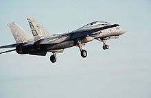 Airplane Picture - F-14 with landing gear (minus the tailhook) deployed
