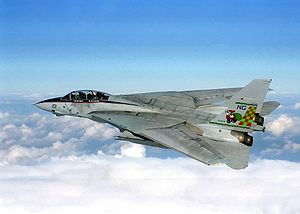 Warbird Picture - An F-14A Tomcat from the USS Nimitz (CVN-68) during Operation Southern Watch