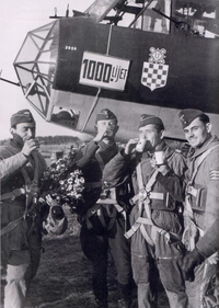 Airplane Picture - Croatian Air Force Legion (HZL) aircrew pose in front of their Dornier Do 17Z bomber in recognition of the unit's 1,000th sortie over the Eastern Front, 16th September 1942. The unit returned to Croatia in December 1942.