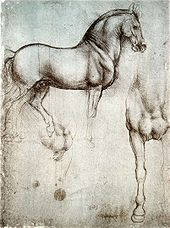 Leonardo da Vinci - Study of horse from Leonardo's journals - Royal Library, Windsor Castle