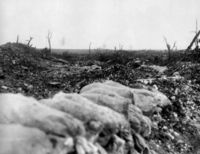 World War 1 Picture - The view from Centre Way trench towards Mouquet Farm, August.