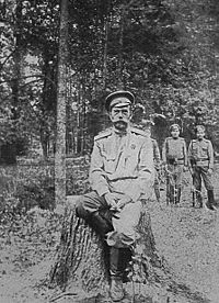 World War 1 Picture - Nicholas II, March 1917, shortly after the revolution brought about his abdication.