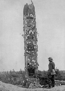 World War 1 Picture - German World War I observation post disguised as a tree.