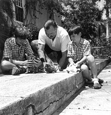 World War 1 Picture - Hemingway and sons Patrick (left) and Gregory, with three cats at Finca Vigx�a ca. 1942-1943. The Hemingways kept cats in Cuba 1942-1960. The polydactyl cats at Hemingway's Key West house arrived after the family's departure in 1940.