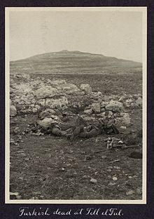 World War 1 Picture - Dead Ottoman soldiers at Tel el Ful