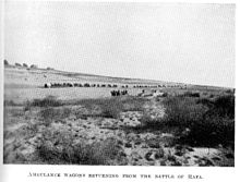 World War 1 Picture - Ambulance Wagons returning to El Arish from Rafa