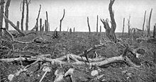 World War 1 Picture - The ruins of Pozix�res looking north, 28 August