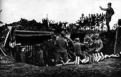 World War 1 Picture - Serbian artillery