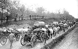 World War 1 Picture - Serbian Army during its retreat towards Albania