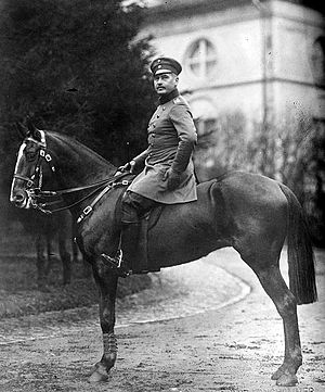 World War 1 Picture - Otto Liman von Sanders