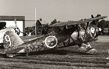World War 1 Picture - Preserved CR.42 in Swedish Air Force markings (1976)
