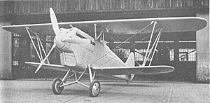 Warbird Picture - Ki-10 Model 1