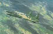 Jungle camouflage F-102As of the 509th FIS over Vietnam, November 1966.